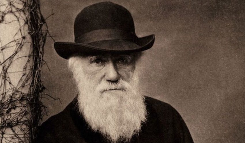 20 List of Scientists Who Contributed to Evolution Theory